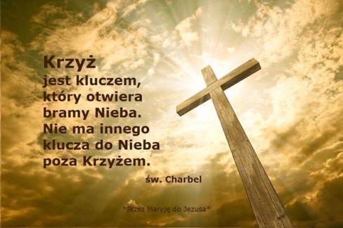 krzyż charbel